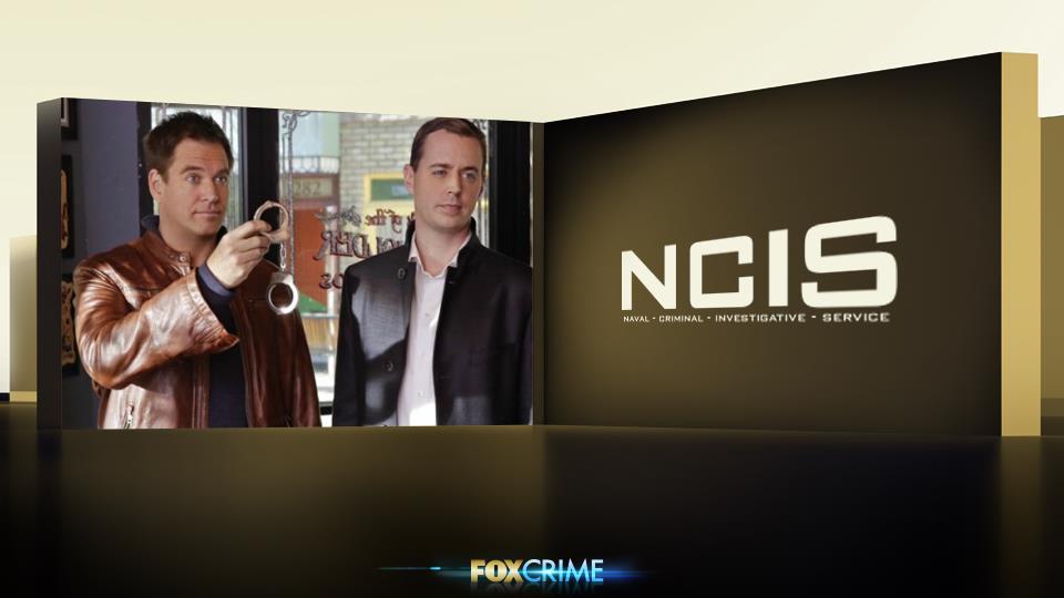 """""""Chi sono questi agenti?"""" - Questa domanda non è da fare se non volete essere picchiati. (In caso, sono DiNozzo e McGee)"""