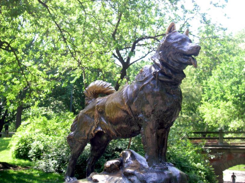La statua di Balto