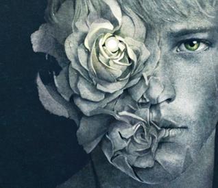 Un dettaglio della copertina di Le Ferite Originali