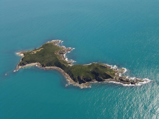L'isola di Wedge