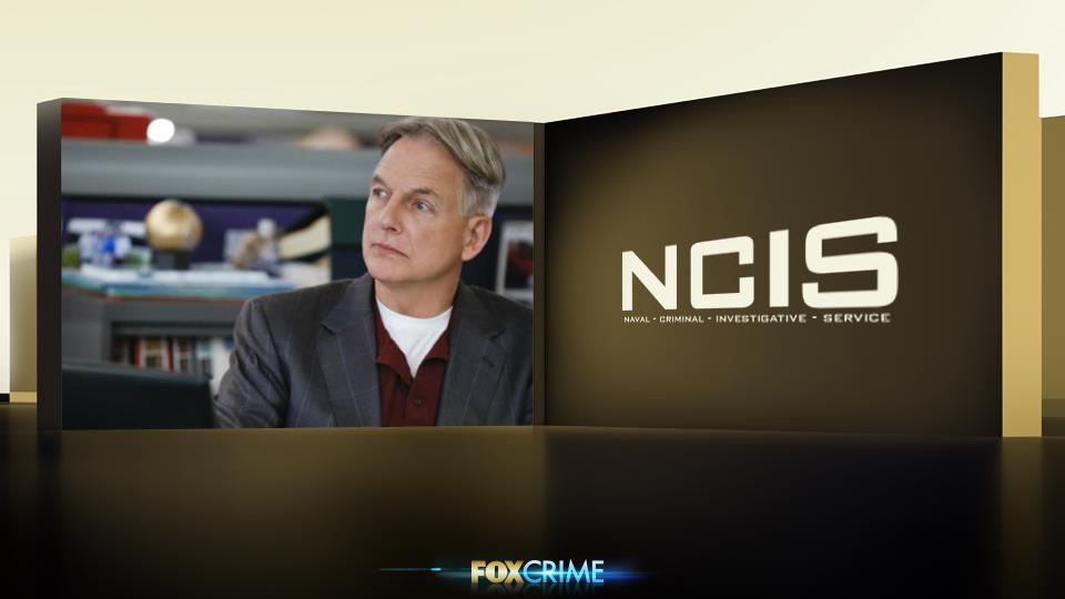 Anche se non sembra, Gibbs tiene molto al suo look. Se lo guardate bene, scoprirete che non si veste a caso: si veste da leader.