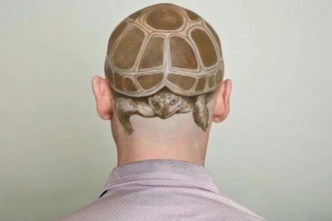 Tartaruga tatuata sulla testa