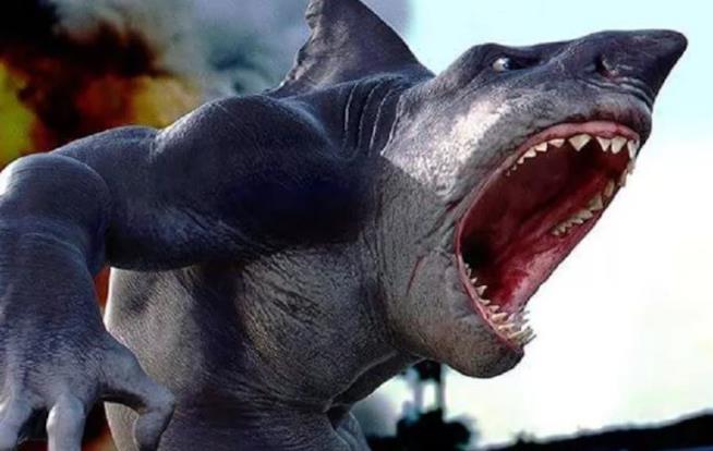 Rip, il più intelligente creativo dei quattro squali