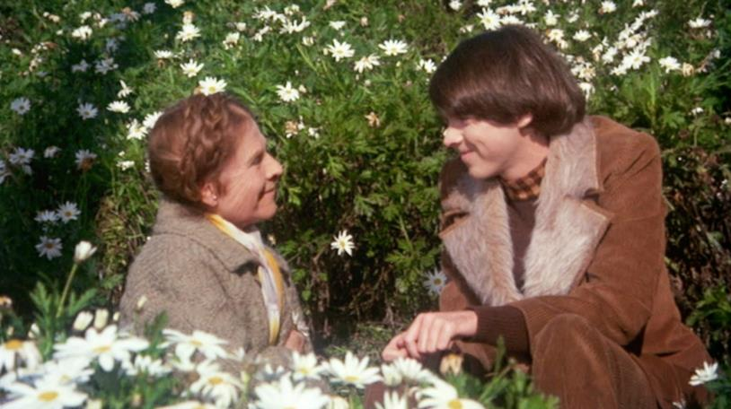 Una scena di Harold e Maude