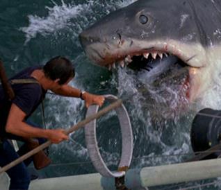 L'attore Roy Scheider nel film Lo squalo