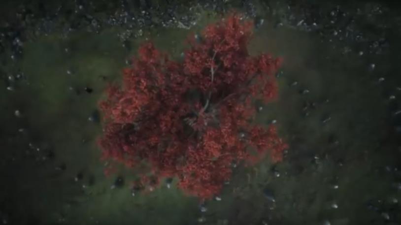 GoT 6: l'albero-diga dove nasce il Re della Notte in una visione di Bran