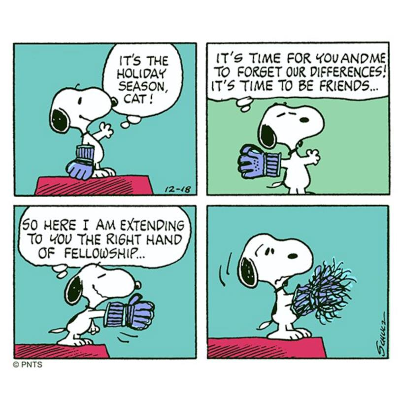 Un fumetto di Snoopy