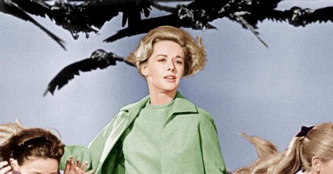 Tippi Hedren in una scena di Uccelli