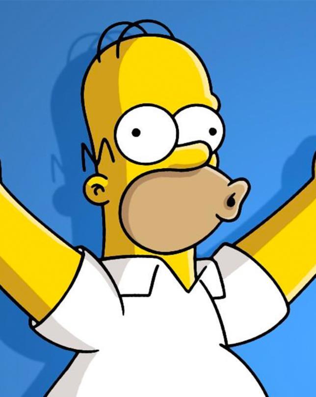 Homer il protagonista de I Simpson