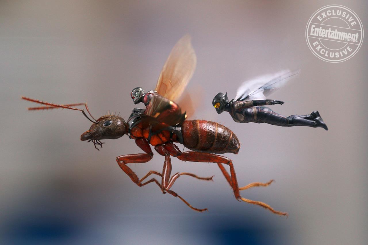 Ant-Man e Wasp volano in una concept art