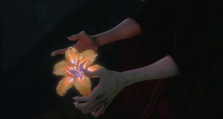 Il fiore magico presente in Rapunzel