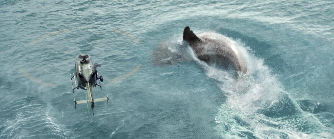 L'enorme squalo in acqua