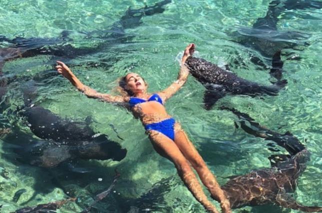 Il momento in cui è stata morsa dallo squalo