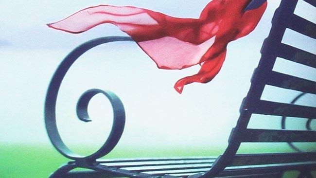 La panchina con il foulard dalla copertina di La ragazza che hai sposato