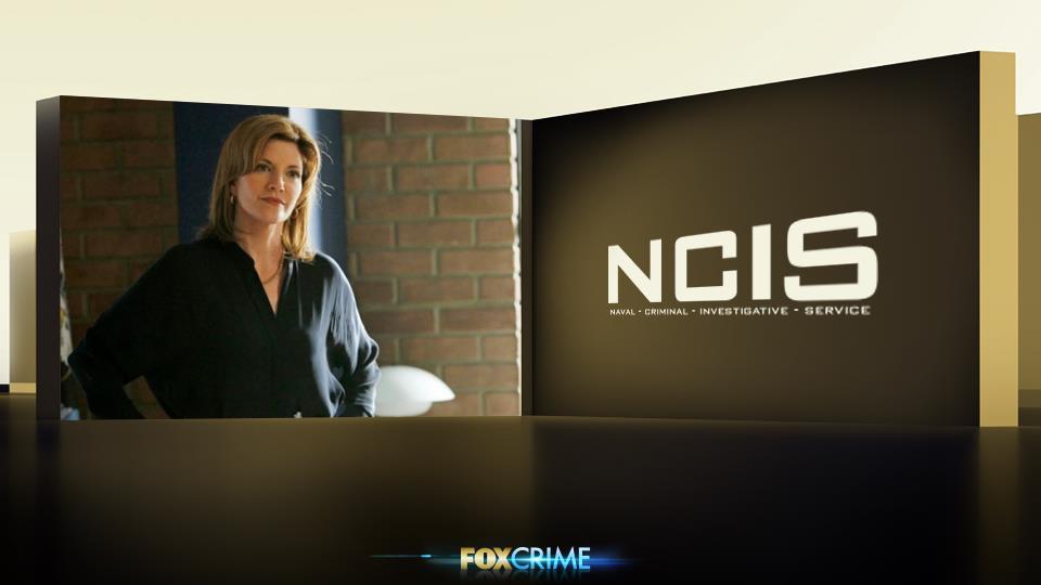 """Con Diane, la seconda moglie, Gibbs ha avuto un rapporto molto """"acceso"""". I due, infatti, litigavano spessissimo."""