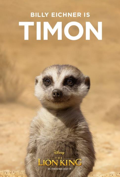 character poster di Timon