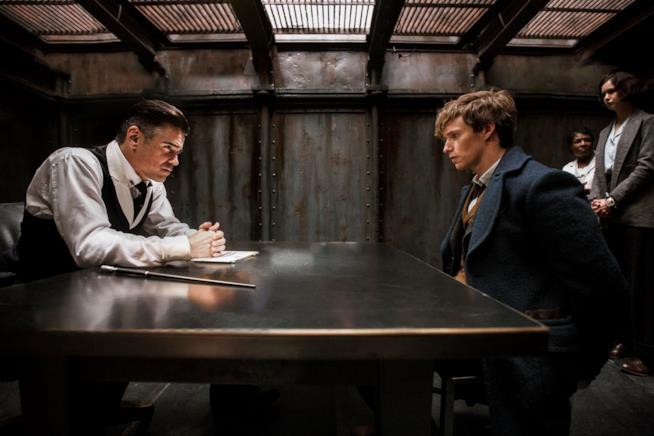 Momento di tensione tra Eddie Redmayne e Colin Farrell in Animali Fantastici e Dove Trovarli