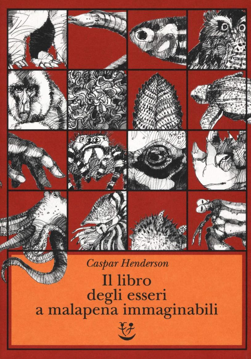 La copertina di Il libro degli esseri a malapena immaginabili