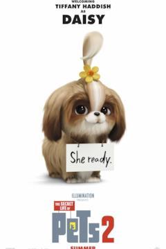 La cagnolina Daisy