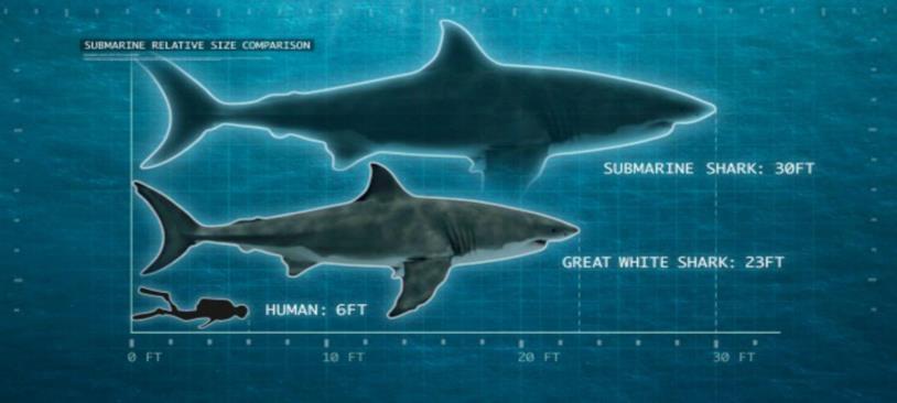 Lo squalo Sottomarino rapportato a un grande squalo bianco e a un uomo