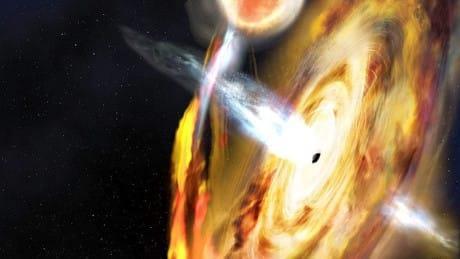 Una rappresentazione di echi di luce sprigionati da un buco nero
