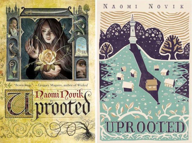 Hugo Awards, tra i 5 romanzi finalisti c'è anche Uprooted di Naomi Novik