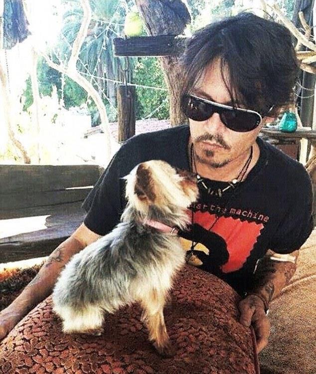 Primo piano di Johnny Depp con il suo cane
