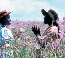 Nettie e Celie bambine ne Il colore viola