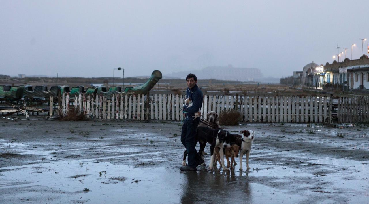 Marcello con alcuni cani al guinzaglio