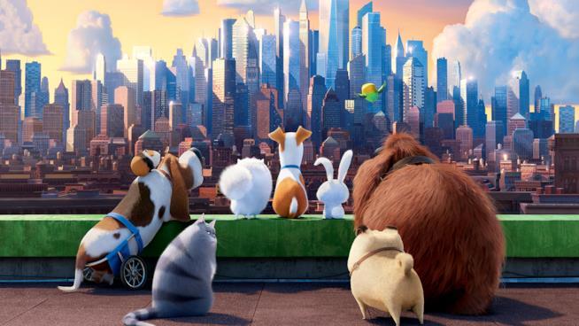 Tutti i protagonisti di Pets - Vita da Animali