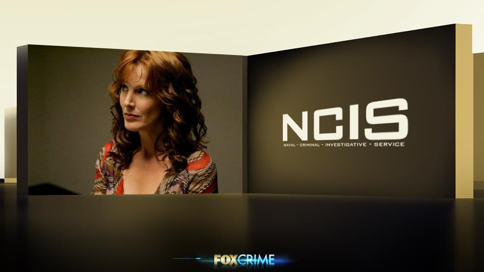 Stephanie Flynn è l'ennesima moglie di Gibbs, ma forse la sua parentesi più felice. I 2 hanno passato molto tempo a Mosca.