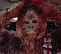 Cosa aspetto avrebbe Chewbacca senza i suoi peli?