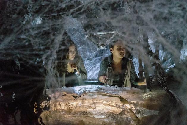 Diana e Jenny esplorano tra le ragnatele