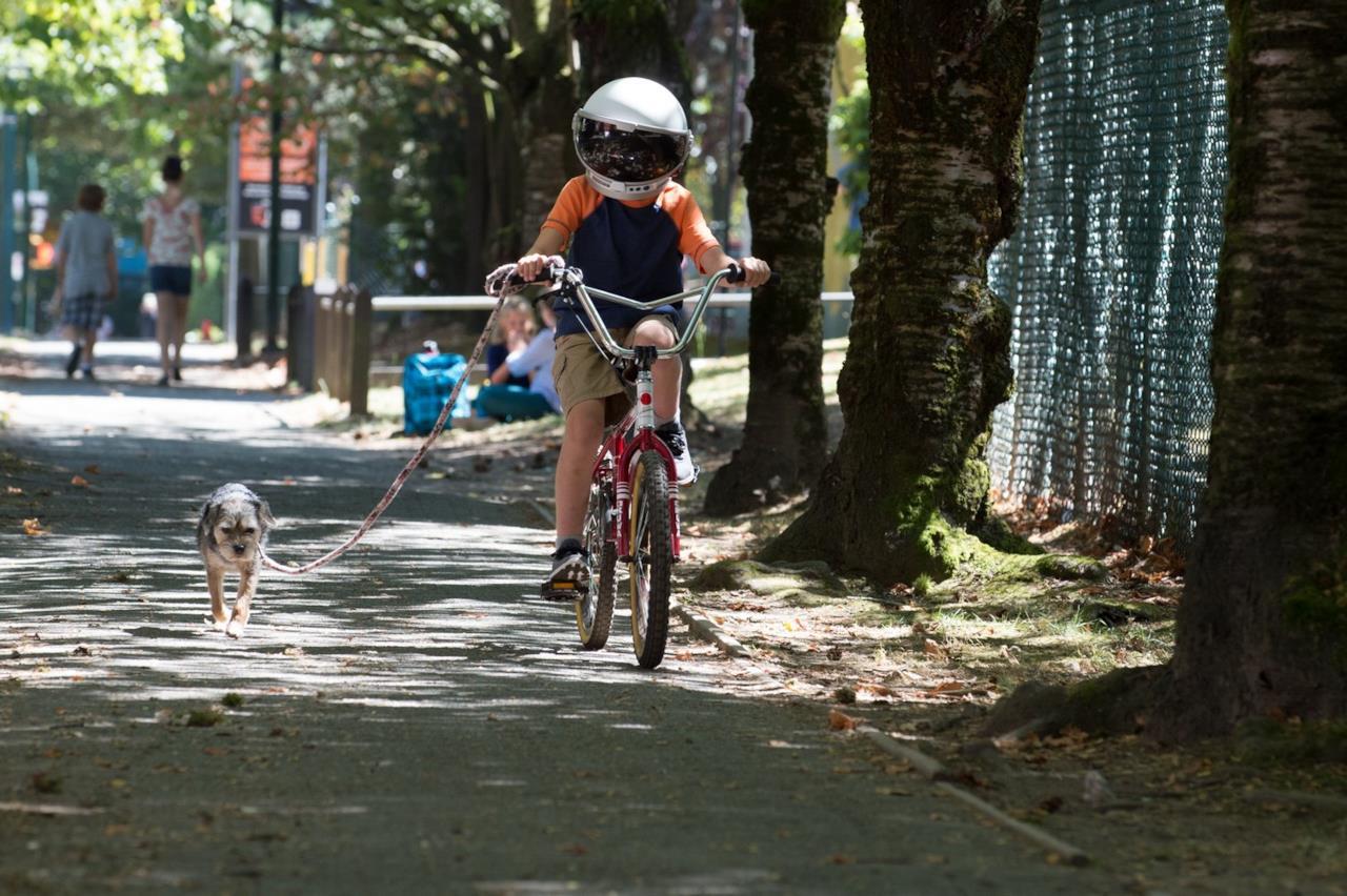Auggie col casco in bici in Wonder