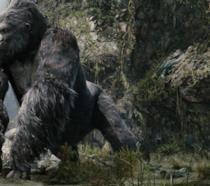 Un'immagine dal film Kong: Skull Island