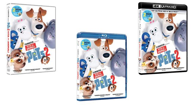 Pets 2 - Vita da animali, il film nei formati DVD, Blu-ray e 4K ultra HD