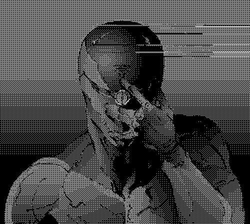 Gray Fox in tecnica glitch
