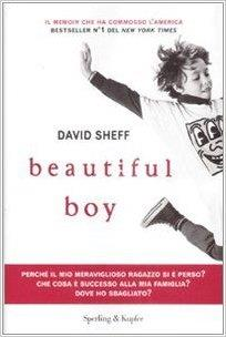 Copertina del libro di David Sheff Beautiful Boy