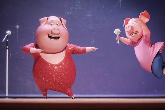 Dei maiali alle audizioni di Sing
