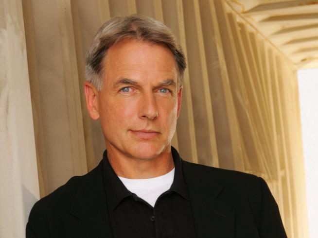 Mark Harmon, l'agente speciale Leroy Jethro Gibbs nella serie NCIS