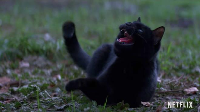 Le Terrificanti Avventure di Sabrina: Salem nel trailer della serie