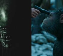 Lo xenomorfo del nuovo Alien e la scimmia Cesare