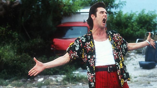Primo piano di Jim Carrey in una scena delfilm  Ace Avventura - L'acchiappanimali
