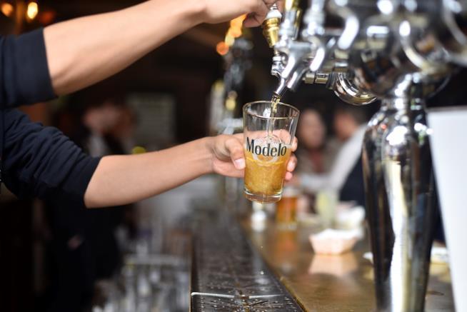 Tra qualche anno gli effetti del cambiamento climatico potrebbero colpire la produzione di birra.