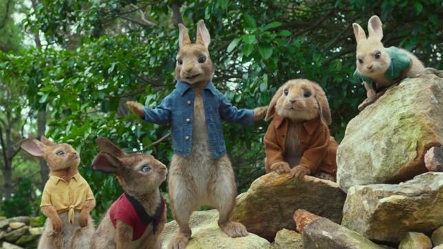 Peter Coniglio su una roccia con gli amici