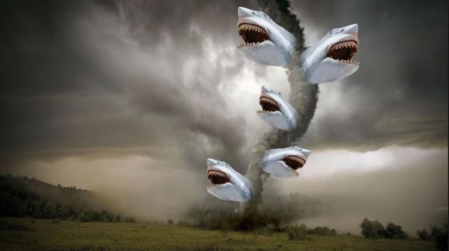 Un tornado di squali