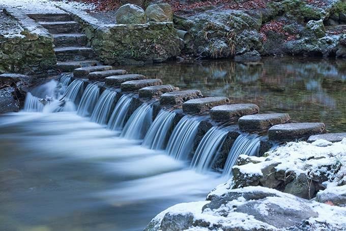 Il Parco Nazionale di Tollymore è il Bosco del Nord