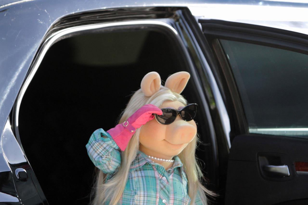 Miss Piggy pronta ad essere paparazzata