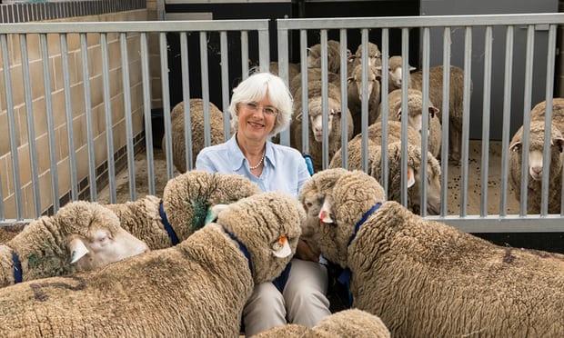 La professoressa Jenny Morton e le sue pecore