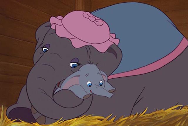 L'elefantino Dumbo e sua madre